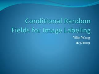 Contingent Random Fields for Image Labeling