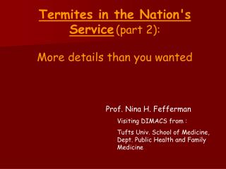 Termites in the Nations Service section 2: More subtle elements than you needed