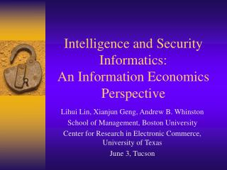 Insight and Security Informatics: An Information Economics Perspective