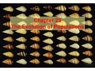 Part 23 The Evolution of Populations