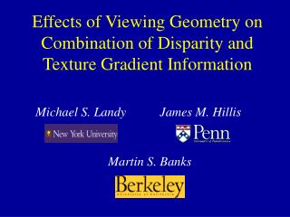 Impacts of Viewing Geometry on Combination of Disparity and Texture Gradient Information