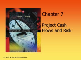 Section 7 Project Cash Flows and Risk