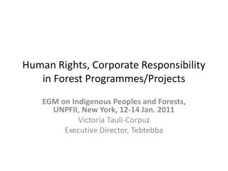 Human Rights, Corporate Responsibility in Forest Programs