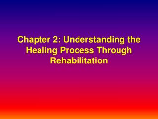 Part 2: Understanding the Healing Process Through Rehabilitation