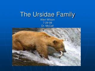 The Ursidae Family Allen Wilson 7-29-08 Dr. McCall