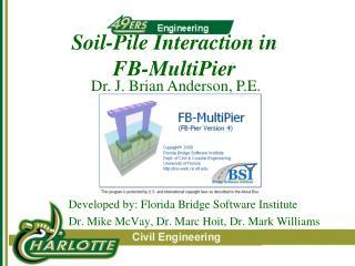 Soil-Pile Interaction in FB-MultiPier