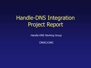 Handle-DNS Integration Project Report