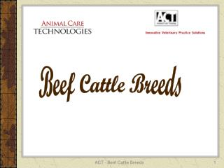 ACT - Beef Cattle Breeds