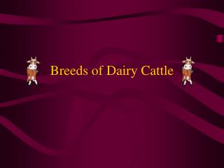 Types of Dairy Cattle
