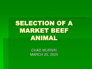 Determination OF A MARKET BEEF ANIMAL