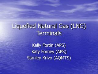 Melted Natural Gas LNG Terminals