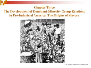 Part Three The Development of Dominant-Minority Group Relations in Pre-Industrial America: The Origins of Slavery