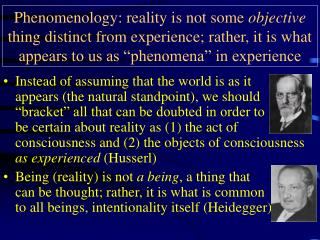 Phenomenology: the truth is not some target thing particular as a matter of fact; rather, it is the thing that appears