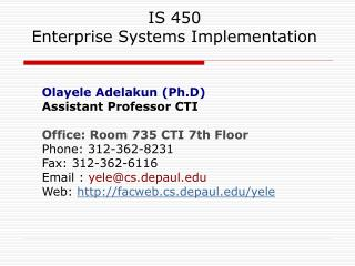IS 450 Enterprise Systems Implementation