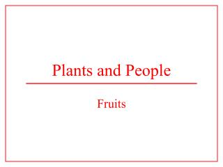 Plants and People