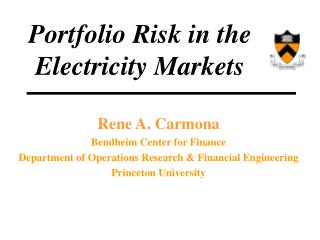 Portfolio Risk in the Electricity Markets