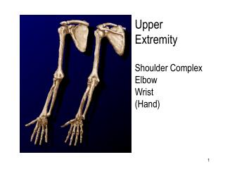 Furthest point Shoulder Complex Elbow Wrist Hand