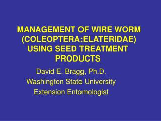 Administration OF WIRE WORM COLEOPTERA:ELATERIDAE USING SEED TREATMENT PRODUCTS