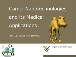 Camel Nanotechnologies and its Medical Applications