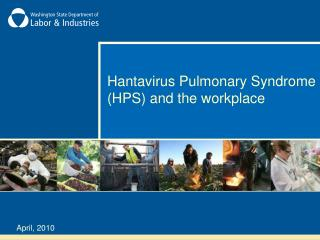 Hantavirus Pulmonary Syndrome HPS and the working environment