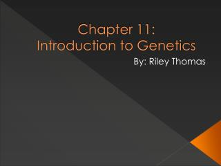 Part 11: Introduction to Genetics